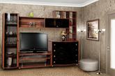Корпусная мебель Гостиная «Техно-3» за 21650.0 руб