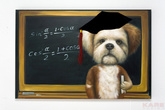 Картина маслом Teacher Dog 80x120 см за 18400.0 руб