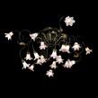 Lightstar Италия 780208 за 18200.0 руб