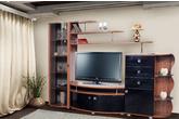 Корпусная мебель Гостиная «Техно-2» за 19200.0 руб