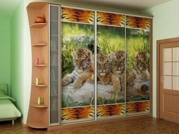 Спальни Шкаф-купе за 14 000 руб