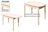 Стол обеденный за 19590.0 руб