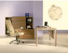 """Офисная мебель Мебель для руководителей серии """"CHARISMA"""" за 25000.0 руб"""