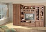 Корпусная мебель Гостиная ФЛАМЕНКО-2 за 11820.0 руб