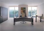 Мебель для руководителей Премьер за 20000.0 руб