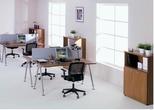 """Офисная мебель Мебель для персонала """"Профи"""" за 5000.0 руб"""