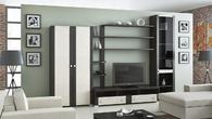 Корпусная мебель Модульная гостиная ФИДЖИ за 21950.0 руб