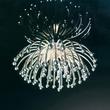 Crystal Light Китай С153-1 за 10500.0 руб