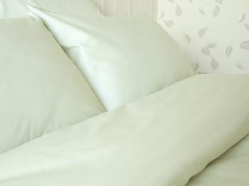 Постельное белье Однотонное постельное белье «Oliva» Семейный за 4 000 руб