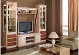 "Корпусная мебель Стенка ""SD-9"" за 51000.0 руб"