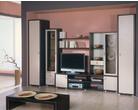 Корпусная мебель Гостинная «Альбера» за 17500.0 руб