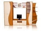 Корпусная мебель Гостиная Эрика-7 за 14340.0 руб