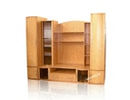 Корпусная мебель Гостиная Эрика-8 за 21510.0 руб