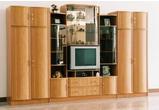 Корпусная мебель Стенка «Вега 5 А» за 34470.0 руб