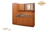 Мебель для кухни Кухня ЛДСП за 13790.0 руб