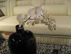 """Цветок """" Орхидея"""" за 850.0 руб"""