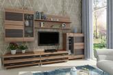 Корпусная мебель Гостиная модульная КАМЕЛИЯ за 2060.0 руб