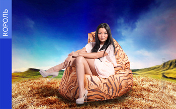 Кресла Живое кресло-мешок Король за 2 000 руб