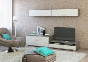 Типовые гостиные Гостиная за 14 910 руб